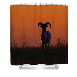 Nature Embracing Nature Shower Curtain