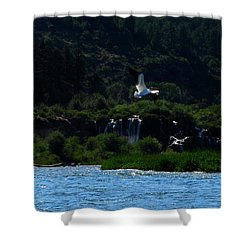 Nature In Flight Shower Curtain by Janice Westerberg