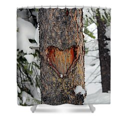 Shower Curtain featuring the photograph Nature In Love by Silke Brubaker
