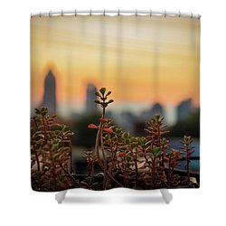 Nature In The City Shower Curtain