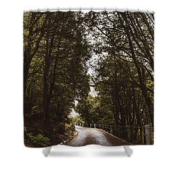 Shower Curtain featuring the photograph Nature Landscape Photo Of A Scenic Mountain Road by Jorgo Photography - Wall Art Gallery