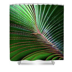 Nature Light And Line Shower Curtain by Jae Mishra