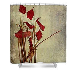 Nature Morte Du Moment Shower Curtain by Aimelle
