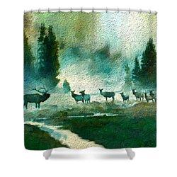 Nature Scene Shower Curtain by Anthony Fishburne