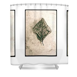 Nature Series Shower Curtain