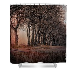 Nature Winter Bare Trees Color  Shower Curtain