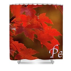 Nature202 Shower Curtain