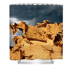 Shower Curtain featuring the photograph Nature's Artistry Nevada 3 by Bob Christopher