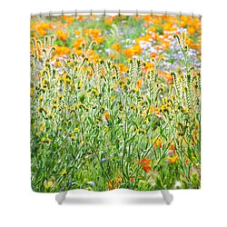 Nature's Artwork - California Wildflowers Shower Curtain