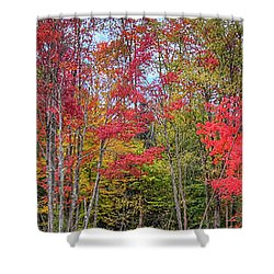 Shower Curtain featuring the photograph Natures Autumn Palette by David Patterson