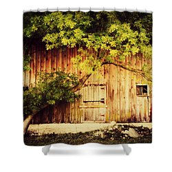Natures Awning Shower Curtain by Julie Hamilton