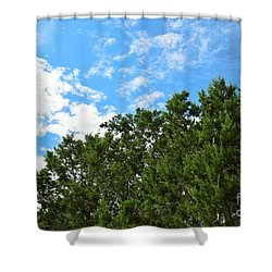 Shower Curtain featuring the photograph Nature's Beauty - Central Texas by Ray Shrewsberry