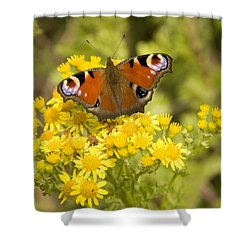Shower Curtain featuring the photograph Nature's Beauty by Ian Middleton