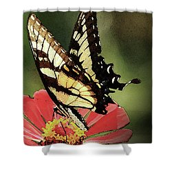 Shower Curtain featuring the digital art Nature's Beauty by Kim Henderson