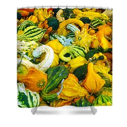 Natures Bounty Shower Curtain by David Lee Thompson