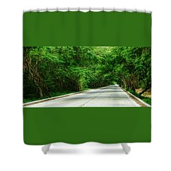Shower Curtain featuring the photograph Nature's Canopy by Cameron Wood