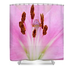 Nature's Canvas Shower Curtain