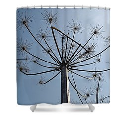 Natures Carnival Shower Curtain