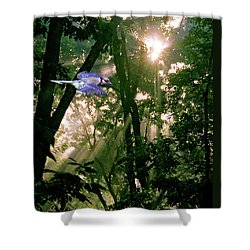 Shower Curtain featuring the photograph Nature's Cathedral by Marie Hicks