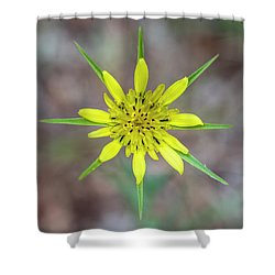 Nature's Compass Shower Curtain