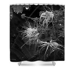 Nature's Decor Shower Curtain