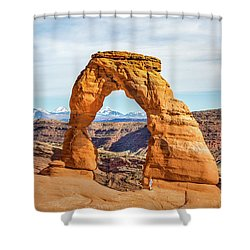 Nature's Delicate Balance Shower Curtain