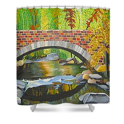 Natures Eye Shower Curtain by Donna Blossom