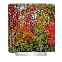 Shower Curtain featuring the photograph Natures Fall Palette by David Patterson