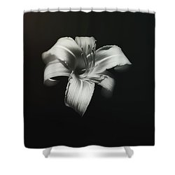 Natures Fireworks Shower Curtain