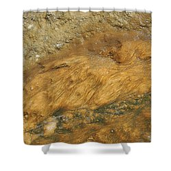 Nature's Flow Shower Curtain by Jayne Wilson