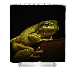 Natures Green 01 Shower Curtain