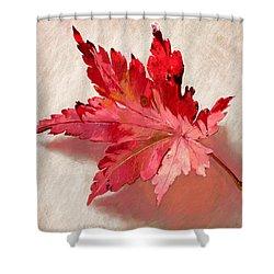 Nature's Handshake Shower Curtain