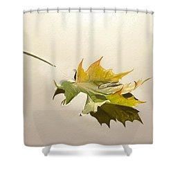 Nature's Handshake 3 Shower Curtain
