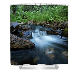 Nature's Harmony Shower Curtain