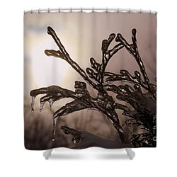 Natures  Ice Sculpture Shower Curtain