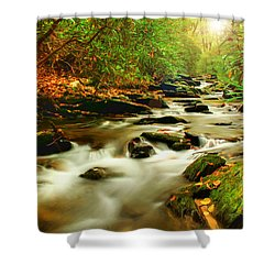 Natures Journey Shower Curtain by Darren Fisher