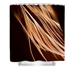 Natures Lines Shower Curtain by Adam Romanowicz