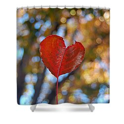 Shower Curtain featuring the photograph Nature's Love by Debra Thompson