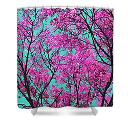 Shower Curtain featuring the photograph Natures Magic - Pink And Blue by Rebecca Harman
