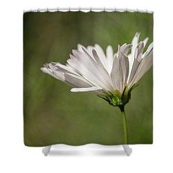 Nature's Paintbrush Shower Curtain