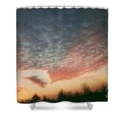 Natures Palette Shower Curtain