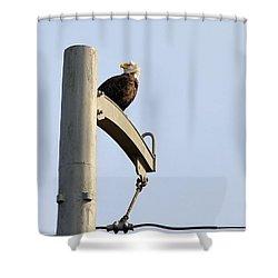 Nature's Philadelphia Eagle Shower Curtain