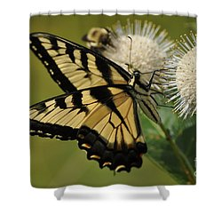 Natures Pin Cushion Shower Curtain