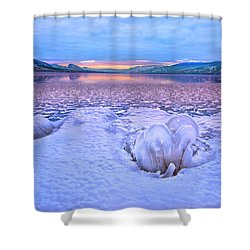 Shower Curtain featuring the photograph Nature's Sculpture by John Poon