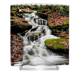 Natures Surprise Shower Curtain by Debbie Green