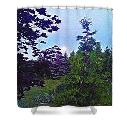 Nature's Textures Shower Curtain by Diamante Lavendar