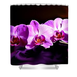 Shower Curtain featuring the photograph Nature's Tiara by Hanne Lore Koehler