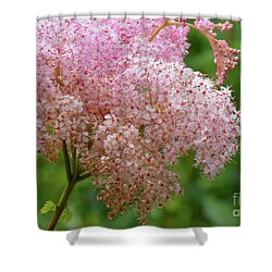 Natures Untouched Beauty Shower Curtain