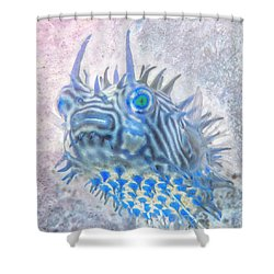 Shower Curtain featuring the photograph Nautical Beach And Fish #12 by Debra and Dave Vanderlaan