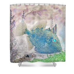 Shower Curtain featuring the photograph Nautical Beach And Fish #2 by Debra and Dave Vanderlaan